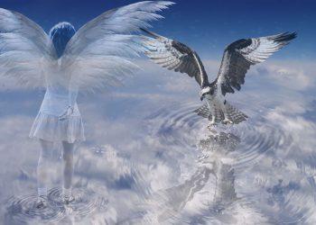 viata dupa moarte - sfatulparintilor.ro - pixabay_com