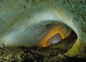 """""""Comoara din adâncuri"""" a fost desoperită întâmplător în anul 1986 de reputatul geolog Cristian Lascu, în timp ce studia proprietăţile solului în vederea construirii unei termocentrale în Mangalia."""
