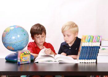 homeschooling - scoala acasa - sfatulparintilor.ro - pixabay_com