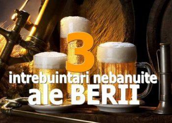 3-intrebuintari-nebanuite-ale-berii-770x470
