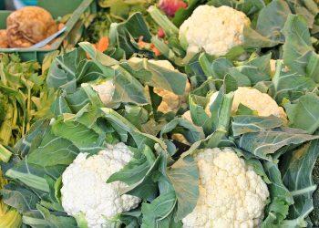 Alimente bogate in calciu -sfatulparintilor.ro - pixabay_com
