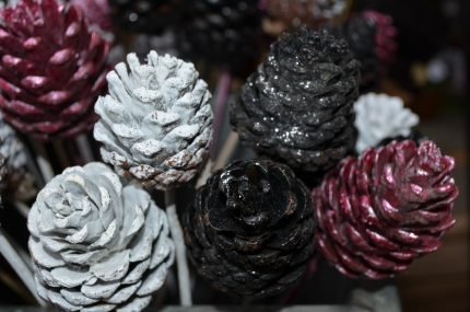 decor iarna conuri - sfatulparintilor.ro - pixabay_com
