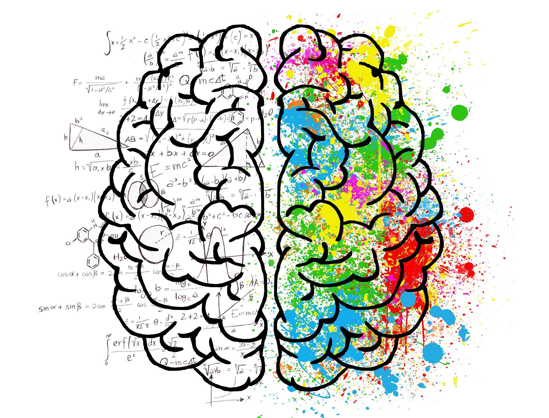 Ce se intampla in creier - satulparintilor.ro - brain-2062057_1920