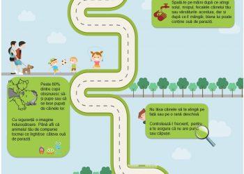 Drumul catre sanatatea familiei tale, Campanie de informare si educare, 2017