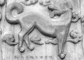 zodiac chinezesc 2018 - sfatulparintilor.ro - pixabay_com - dog-279650_1920