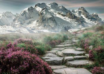 drum in viata unives - sfatulparintilor.ro - pixabay_com - mountain-landscape-2031539_1920