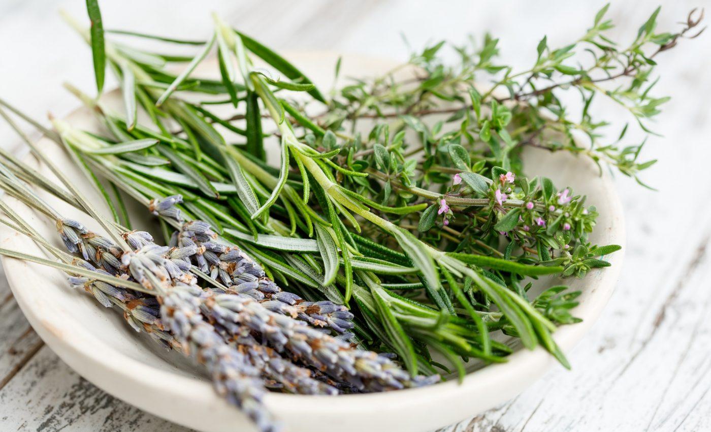 plante aromatice - sfatulparintilor.ro - pixabay_com - herbs-2523119_1920