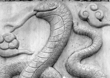 zodie sarpe - sfatulparintilor.ro - pixabay_com - si-279640_1920