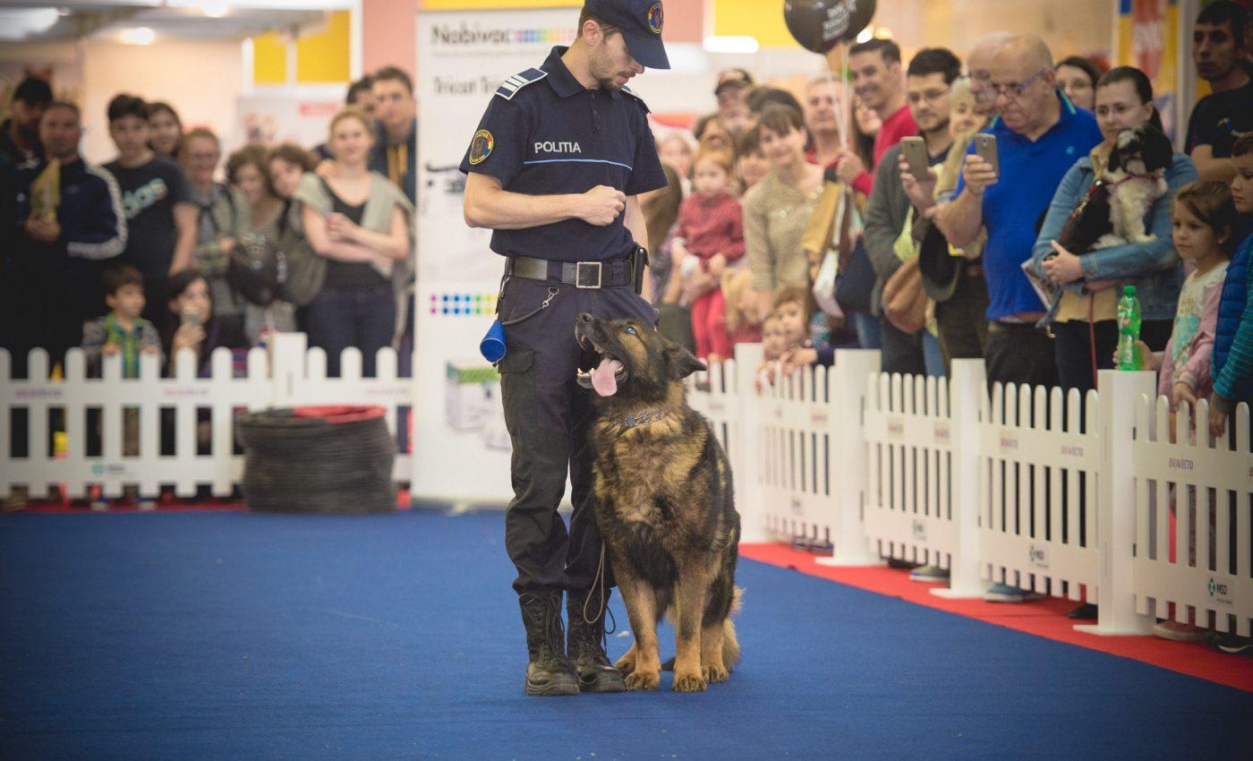 Posesorii de animale vor putea câștiga premii în valoare totală de peste 10.000 lei, anunță organizatorii PetExpo, singurul eveniment de pet lifestyle din România.