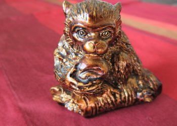anul maimutei - sfatulparintlior.ro - pixabay_com - monkey-1176162_1920