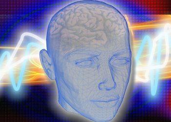 creier - sfatulparintilor.ro - pixabay_com - head-1058432_1280