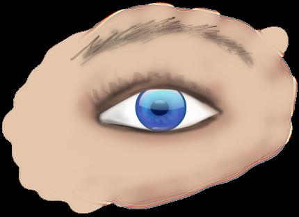 arcada mica - sfatulparintilor.ro - pixabay-com - eye-151567_1280
