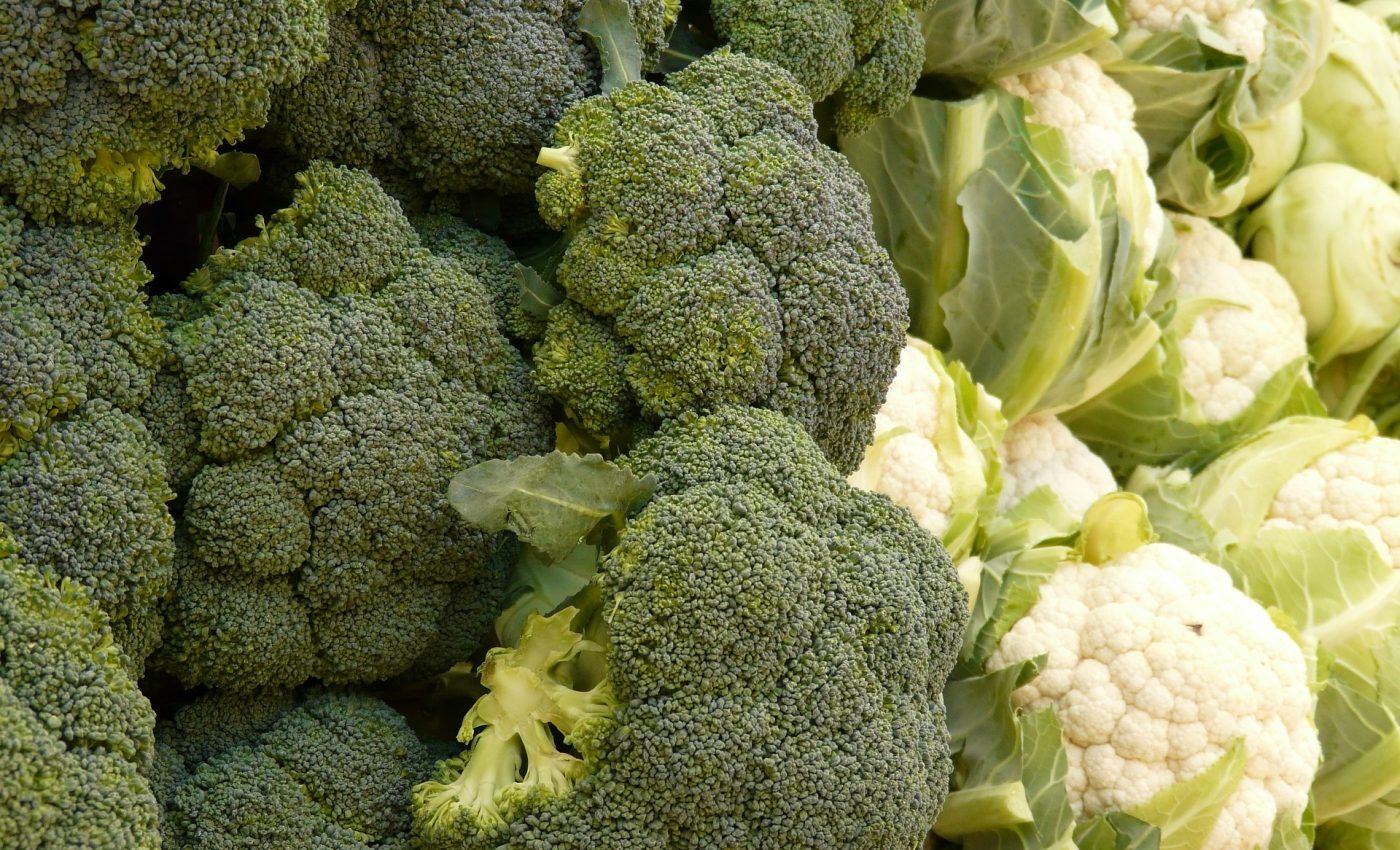 conopida broccoli - sfatulparintilor.ro - pixabay_com -5735_1920