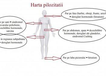 harta pilozitatii