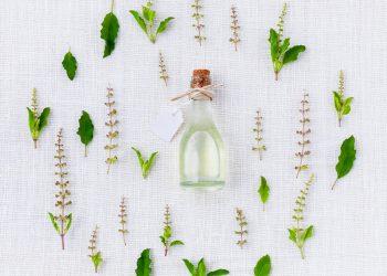 menta - sfatulparintilor.ro - pixabay_com - aroma-906137_1920