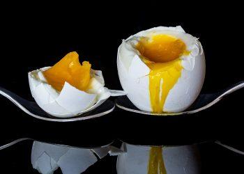 ou fiert - sfatulparintilor.ro - pixabay_com - egg-2161877_1920