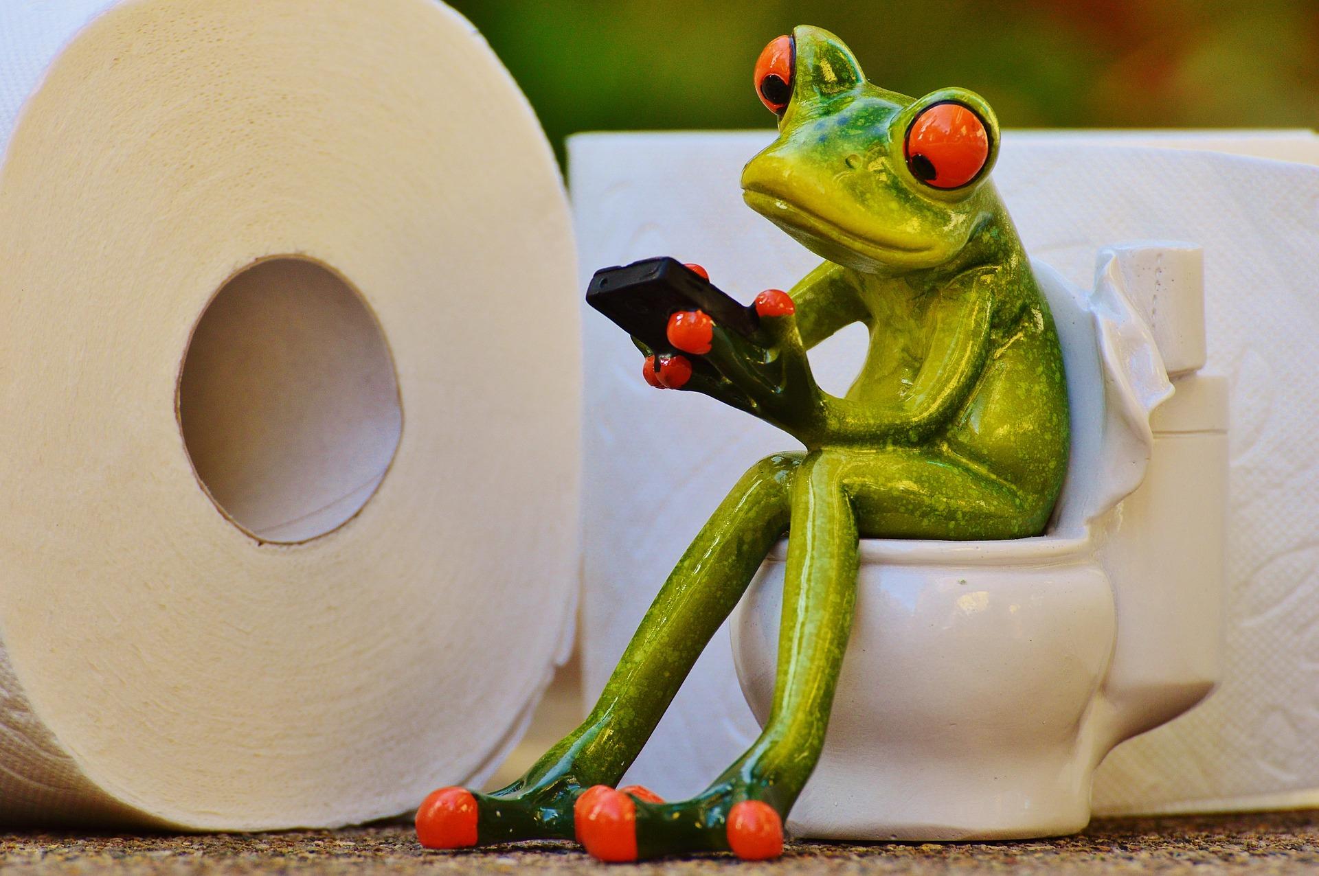 sa nu arunci in WC - sfatulparintilor.ro - pixabay_com - frog-1037251_1920