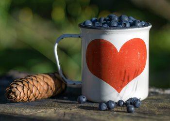 alimente inima - sfatulparintilor.ro - pixabay-com - blueberry-1505482_1920