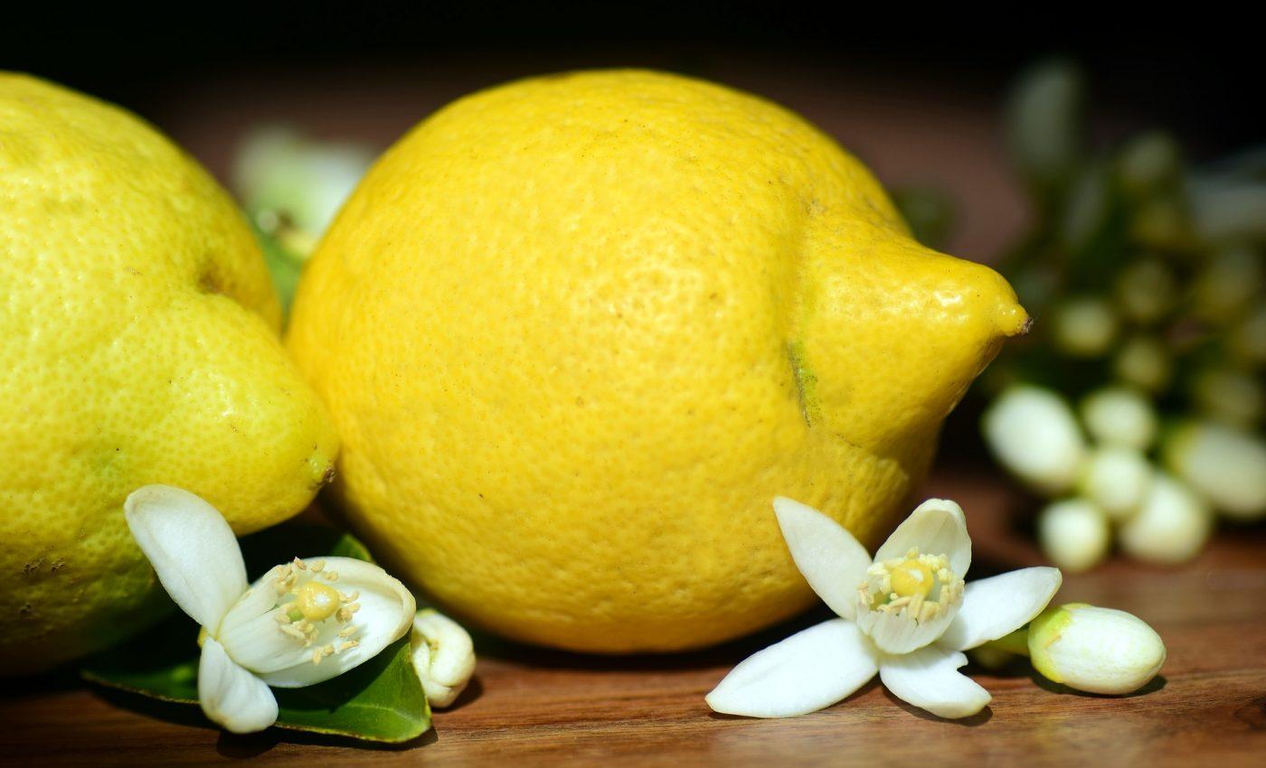 utilizari lamai - sfatulparintilor.ro - pixabay_com - lemons-2245524_1920