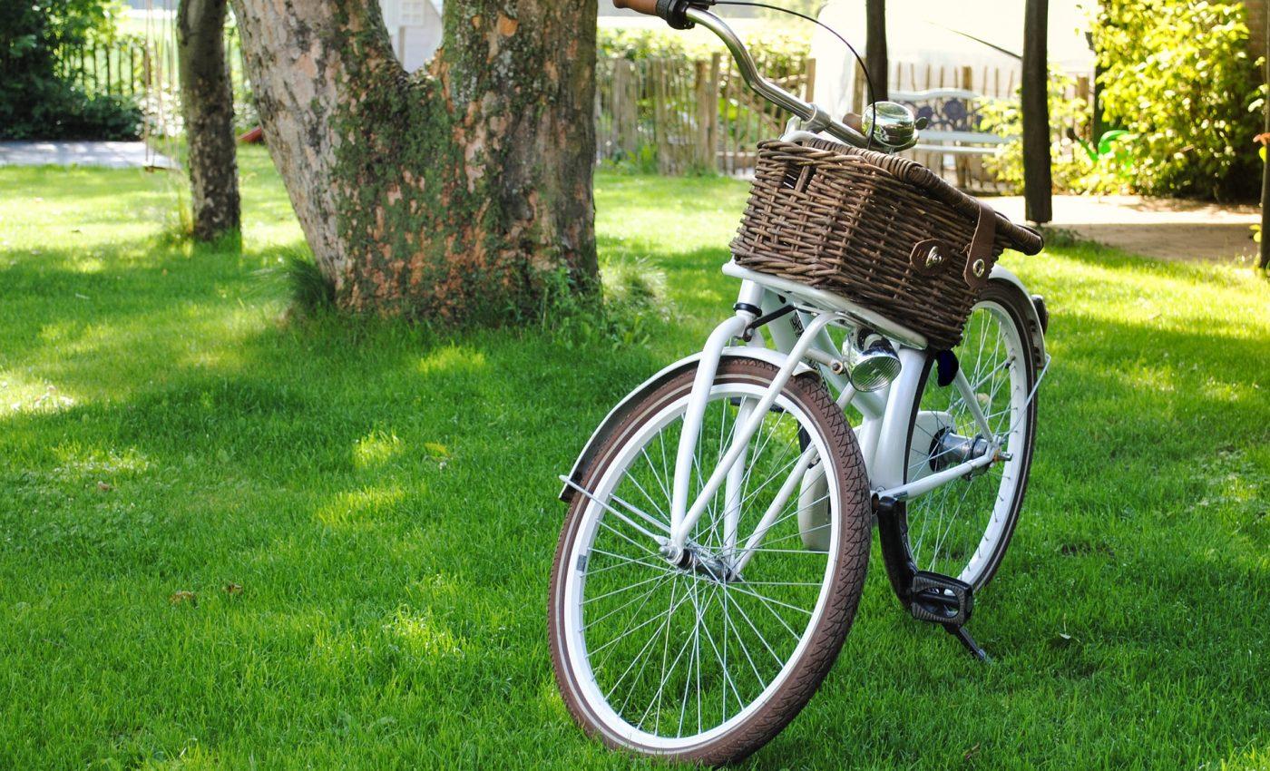 Ce fel de persoana esti - sfatulparintilor.ro - pixabay_com - bicycle-2471178_1920