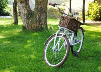 bicicleta - transport - sfatulparintilor.ro - pixabay_com - bicycle-2471178_1920