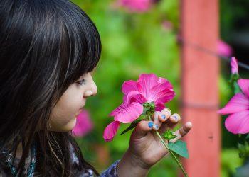Plante care iti pot otravi copilul