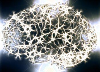 distrug creierul - sfatulparintilor.ro - pixabay_com - neurons-1739997_1920