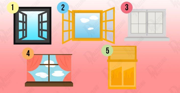 Ce dezvaluie fereastra aleasa