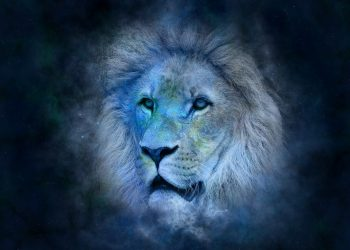 leu zodie horoscop - sfatulparintilor.ro - pixabay_com - horoscope-639123_1920
