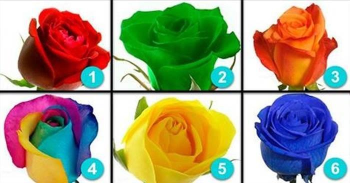 test trandafiri