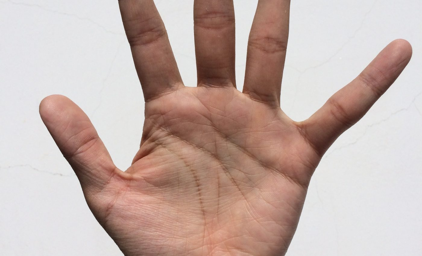 Misterul literei X din palma - sfatulparintilor.ro - pixabay_com - palm-1701980