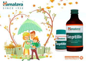 Septilin AdvS 1024x768
