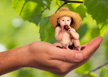 dilema mame - mancare copii - sfatulparintilor.ro - pixabay_com - vitamins-2002561
