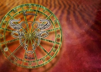 horoscop - sfatulparintilor.ro - pixabay_com - bull-2691107_1920
