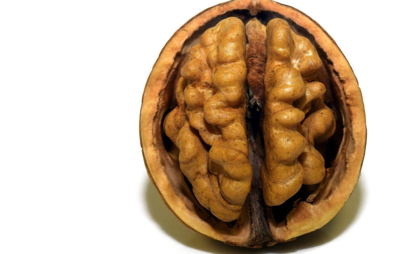 Alimentele care iti distrug creierul - sfatulparintilor.ro - pixabay_com - walnut-3072652_1920