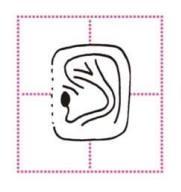 Urechi patratoase