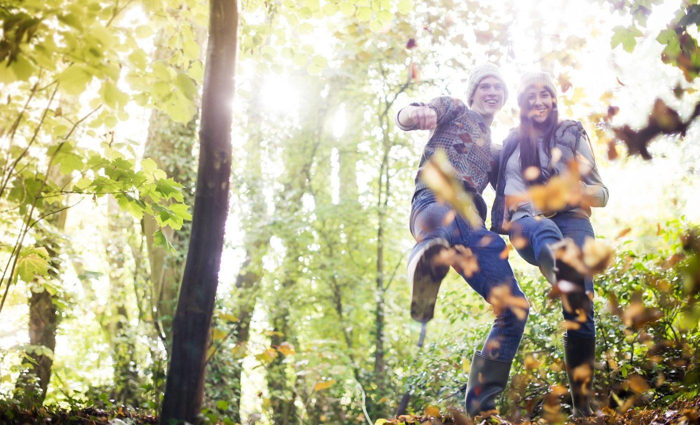 calitati octombrie - sfatulparintilor.ro - pixabay_com - autumn-2353873_1920