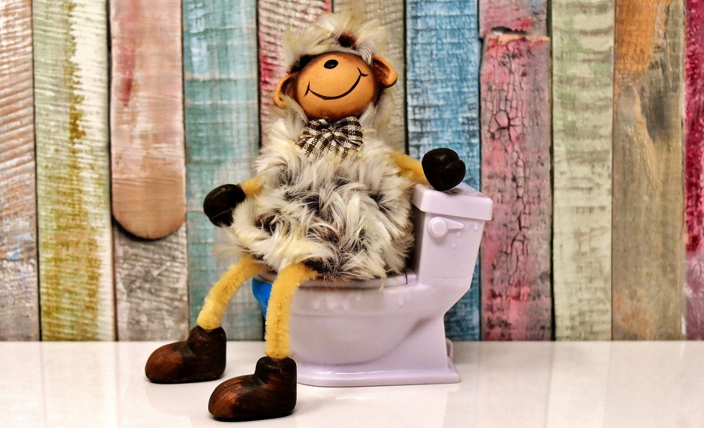 constipatia la copiii mici - sfatulparintilor.ro - pixabay-com - toilet-3298222_1920