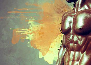 corpul uman - sfatulparintilor.ro - pixabay_com - muscles-2525200
