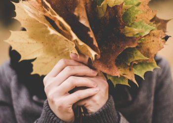 personalitate octombrie - sfatulparintilor.ro - pixabay_com - maple-leaves-1030957_1920