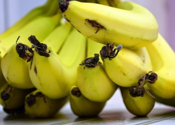 sa mananci banane - sfatulparintilor.ro - pixabay-com - bananas-3780761