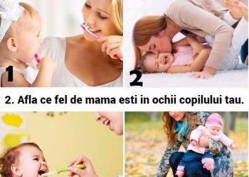 test ce fel de mama esti