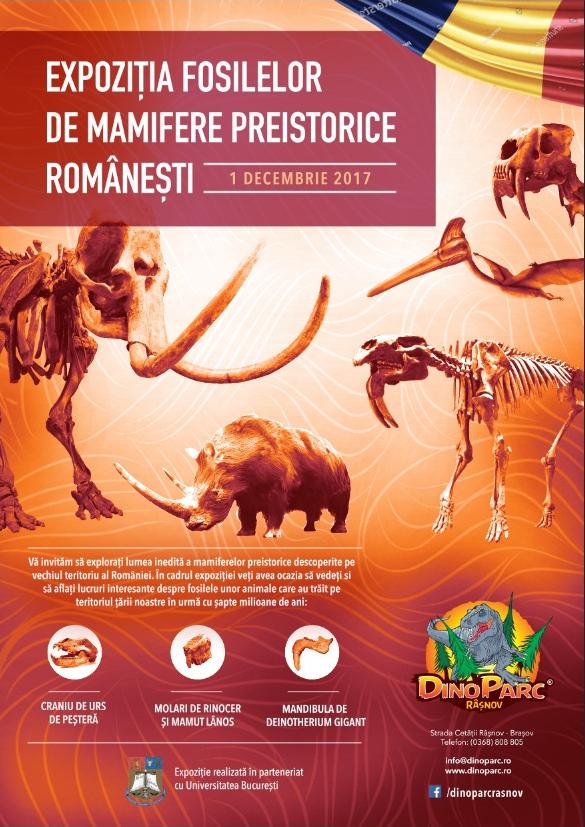 Vizual Expozitie 1 Decembrie - Dino Parc