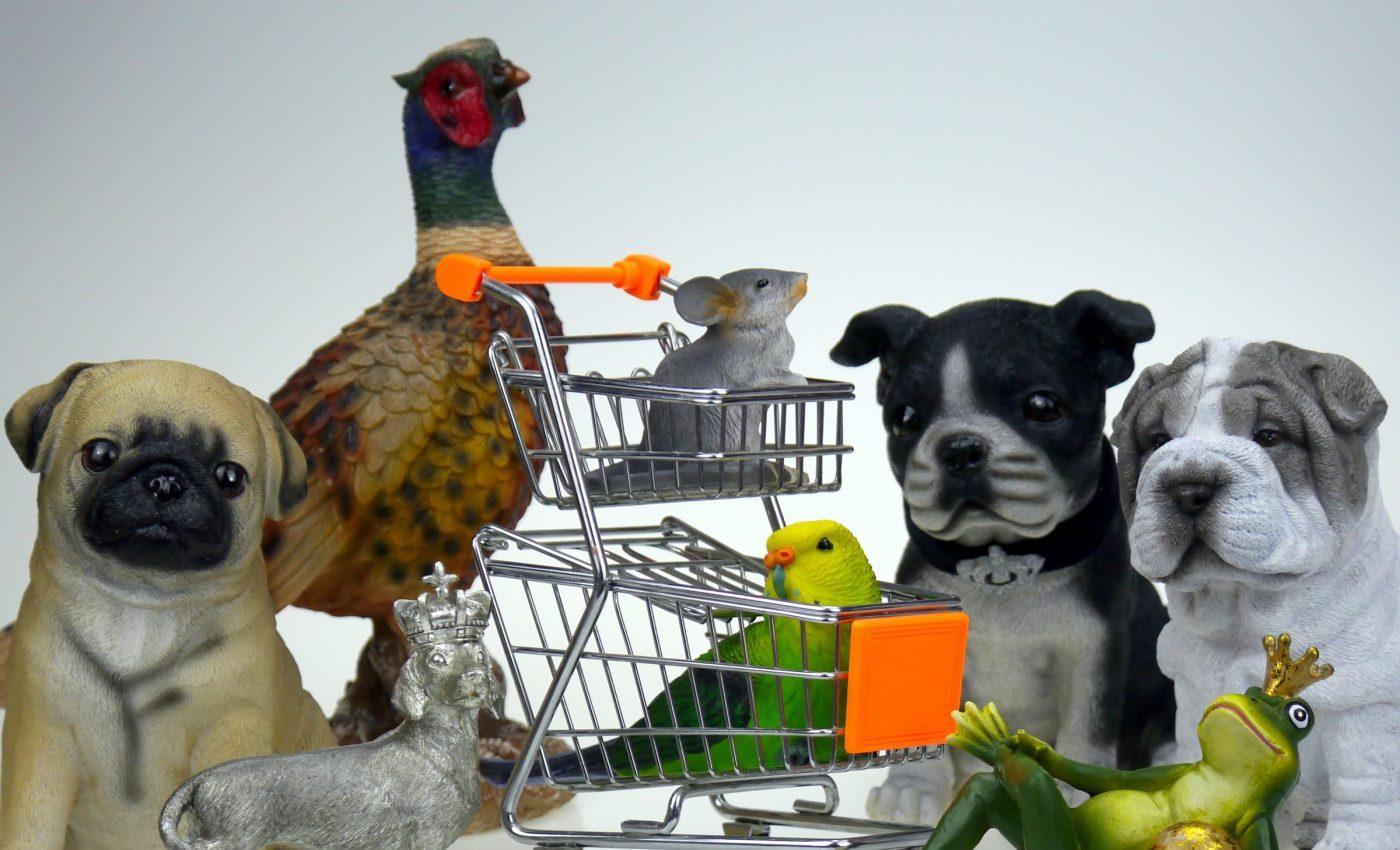 animal de companie - sfatulparintilor.ro - pixabay_com - shopping-1900995
