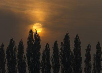 rasarit - dimineata - sfatulparintilor.ro - pixabay_com - sunrise-2876910_1920