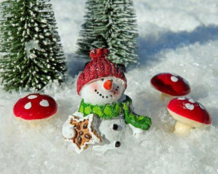 decoratiuni craciun ciuperci - sfatulparintilor.ro - pixabay_com - snow-man-2905448_1920