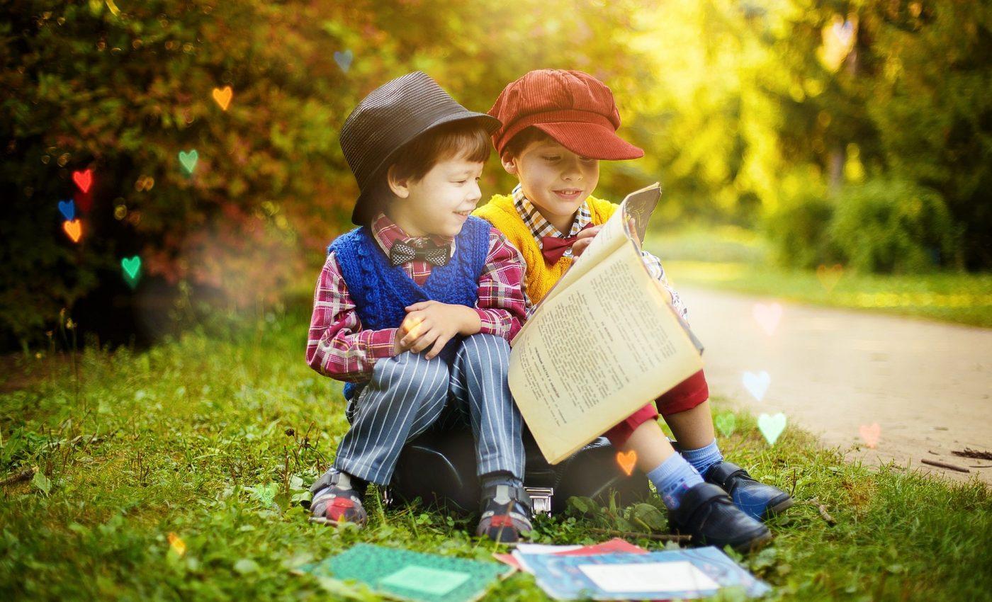 Educatie copii - sfatulparintilor.ro - pixabay_com - read-4208554_1920