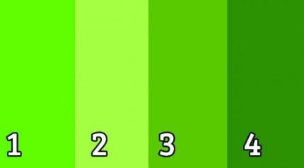 alege o culoare - verde - colors_0007_green-1-600x332