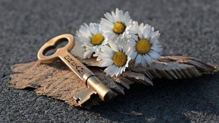 declaratii de dragoste - sfatulparintilor.ro - pixabay_com key-3087900_1920