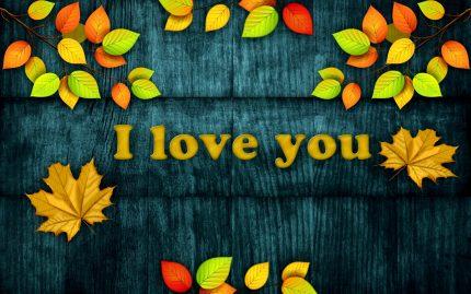 declaratii de dragoste - sfatulparintilor.ro - pixabay_com pattern-3087031